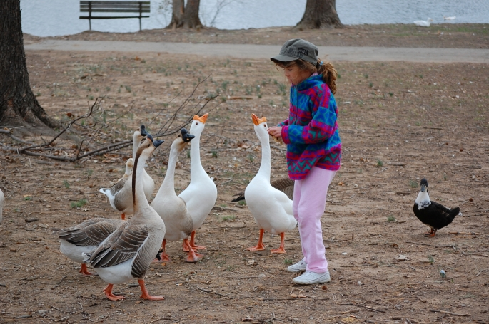 Joy having fun with the ducks on the pathfinder